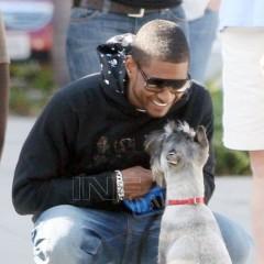 Usher-schnauzer