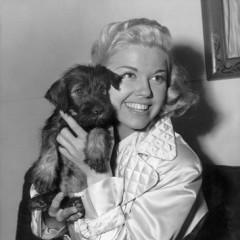 Doris-Day-With-Schnauzer